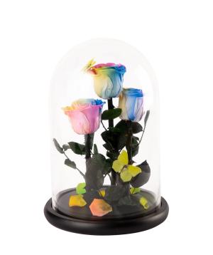 Վարդ «EM Flowers» հավերժական, բնական թիթեռներով