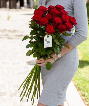 Roses `Montana` red 15 pcs