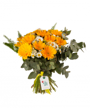 """Bouquet """"Afak"""" with gerberas and chamomiles"""