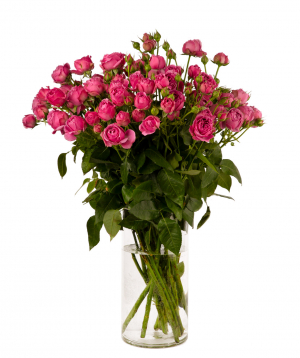 Bouquet `MISTY BUBBLES` with peony rose
