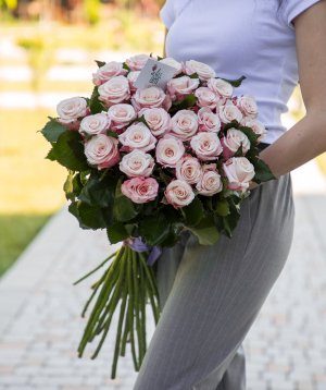 Roses «Lady raphaella» light pink 29 pcs