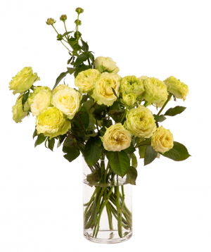 Bouquet `GREEN MAGIC` with peony rose