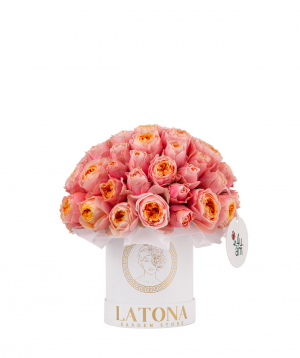 Composition `Celeano` with peony roses