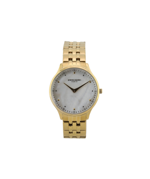 Watches Pierre Cardin PC902722F208