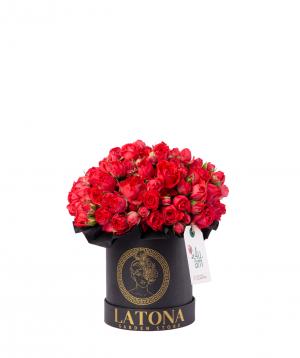 Կոմպոզիցիա «Կալիպսո» փնջային վարդերով