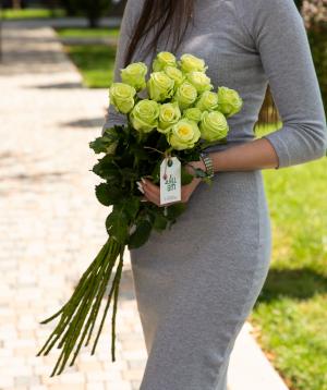 Roses `Green gene` green 15 pcs