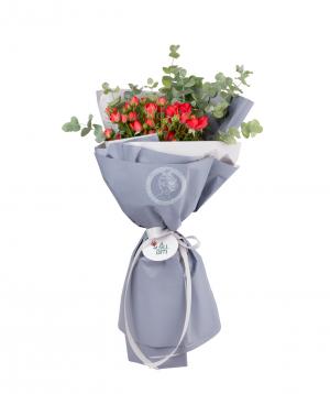 Bouquet `Tokyo`  bush rose