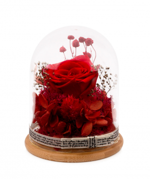 """Composition """"EM Flowers"""" eternal rose and hydrangea red 13 cm in a flask"""