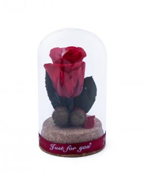 "Rose ""EM Flowers""mini eternal red 10 cm"