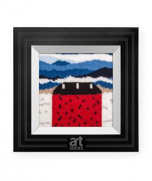 Գուլպաներ «Art socks» «Կարմիր տունը» կտավով