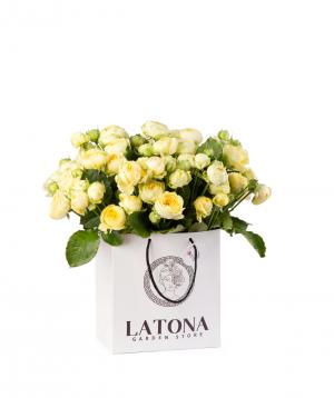 Կոմպոզիցիա «Louis Vuitton» պիոն վարդերով